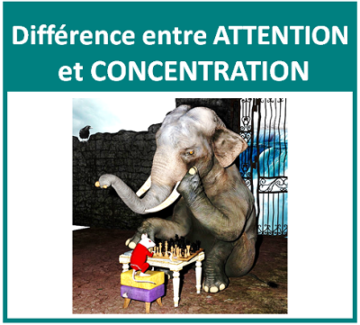 difference-entre-attention-et-concentration